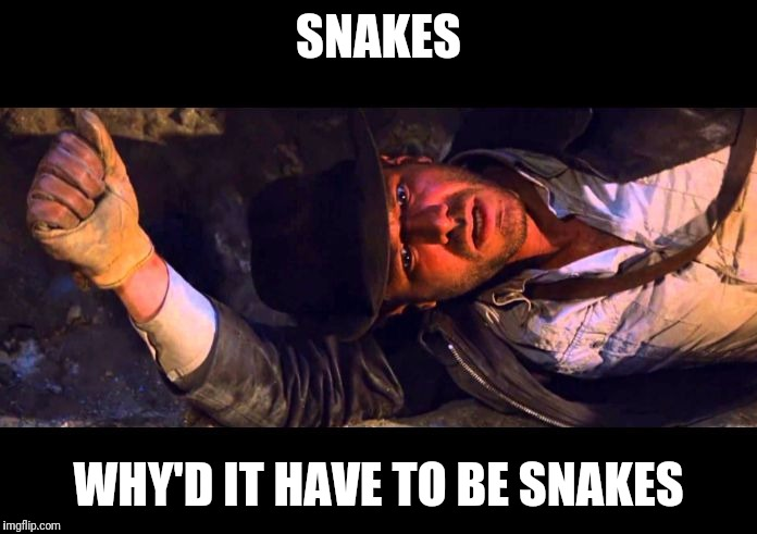Indiana Jones Why'd It Have to be Snakes |  SNAKES; WHY'D IT HAVE TO BE SNAKES | image tagged in indiana jones why'd it have to be snakes | made w/ Imgflip meme maker