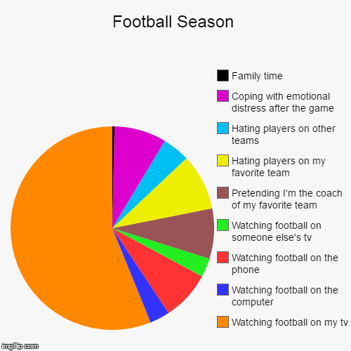 Football Season | Watching football on my tv, Watching football on the computer, Watching football on the phone, Watching football on someon | image tagged in funny,pie charts | made w/ Imgflip chart maker