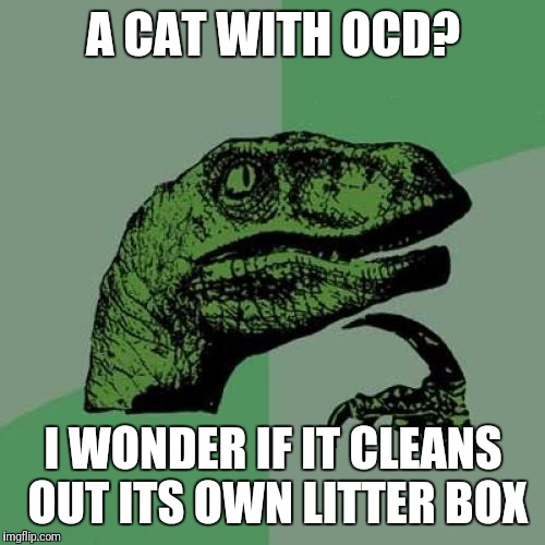 Philosoraptor Meme | A CAT WITH OCD? I WONDER IF IT CLEANS OUT ITS OWN LITTER BOX | image tagged in memes,philosoraptor | made w/ Imgflip meme maker