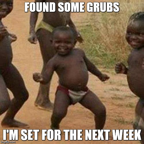 Third World Success Kid Meme | FOUND SOME GRUBS I'M SET FOR THE NEXT WEEK | image tagged in memes,third world success kid | made w/ Imgflip meme maker