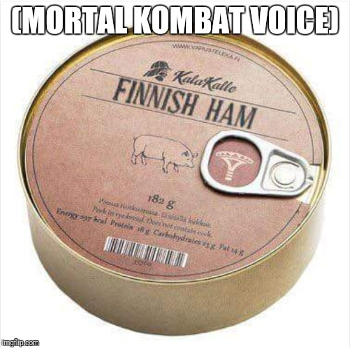 (MORTAL KOMBAT VOICE) | image tagged in mortal kombat,finnish,ham | made w/ Imgflip meme maker