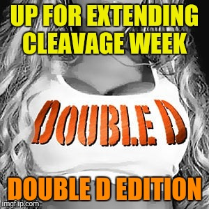 Due to it's success and a Imgflip glitch that slowed down submissions, I propose a Double D edition of Cleavage Week! | UP FOR EXTENDING CLEAVAGE WEEK DOUBLE D EDITION | image tagged in cleavage week | made w/ Imgflip meme maker