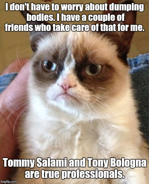 Grumpy Cat Meme | I don't have to worry about dumping bodies. I have a couple of friends who take care of that for me. Tommy Salami and Tony Bologna are true  | image tagged in memes,grumpy cat | made w/ Imgflip meme maker