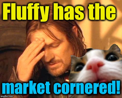 Fluffy has the market cornered! | made w/ Imgflip meme maker