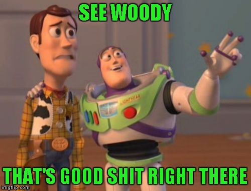 X, X Everywhere Meme | SEE WOODY THAT'S GOOD SHIT RIGHT THERE | image tagged in memes,x x everywhere | made w/ Imgflip meme maker