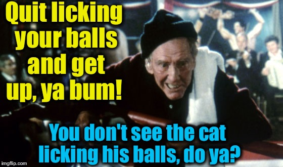 Quit licking your balls and get up, ya bum! You don't see the cat licking his balls, do ya? | made w/ Imgflip meme maker