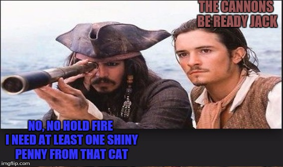 THE CANNONS BE READY JACK NO, NO HOLD FIRE I NEED AT LEAST ONE SHINY PENNY FROM THAT CAT | made w/ Imgflip meme maker