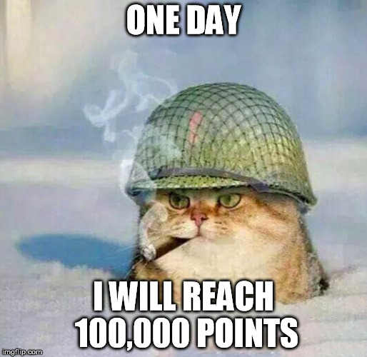 War Cat | ONE DAY I WILL REACH 100,000 POINTS | image tagged in war cat,memes,meme,jango,somewhat funny | made w/ Imgflip meme maker