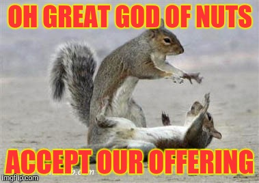 When you're a squirrel but you need a bountiful harvest | OH GREAT GOD OF NUTS ACCEPT OUR OFFERING | image tagged in memes,squirrels,funny,magic | made w/ Imgflip meme maker
