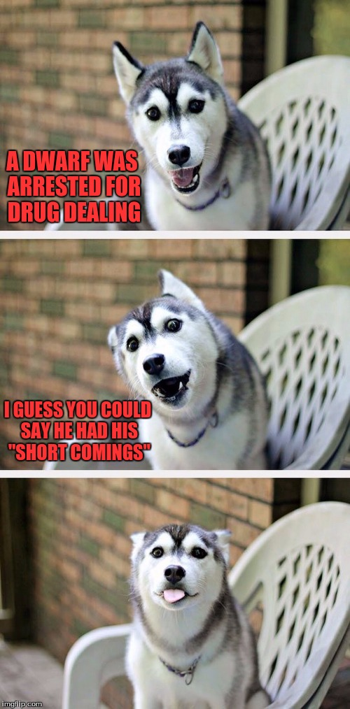 "Three cheers to being on Imgflip for over a year and never getting a front page~! | A DWARF WAS ARRESTED FOR DRUG DEALING I GUESS YOU COULD SAY HE HAD HIS ""SHORT COMINGS"" 