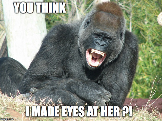 YOU THINK I MADE EYES AT HER ?! | image tagged in harambe thinks its funny | made w/ Imgflip meme maker