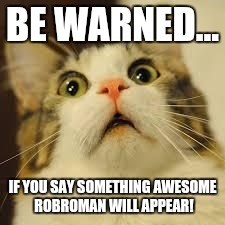 Robroman, the awesome dude! | BE WARNED... IF YOU SAY SOMETHING AWESOME ROBROMAN WILL APPEAR! | image tagged in scared cat,robroman | made w/ Imgflip meme maker