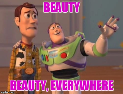 X, X Everywhere Meme | BEAUTY BEAUTY, EVERYWHERE | image tagged in memes,x x everywhere | made w/ Imgflip meme maker