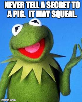Kermit the Frog Meme | NEVER TELL A SECRET TO A PIG.  IT MAY SQUEAL. | image tagged in kermit the frog meme | made w/ Imgflip meme maker