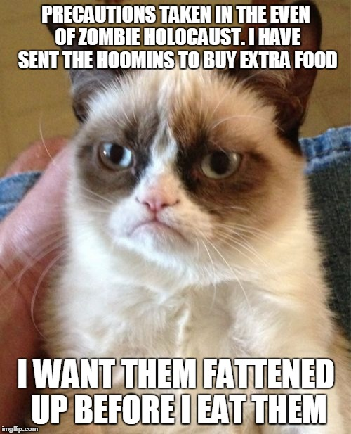 Grumpy Cat Meme | PRECAUTIONS TAKEN IN THE EVEN OF ZOMBIE HOLOCAUST. I HAVE SENT THE HOOMINS TO BUY EXTRA FOOD I WANT THEM FATTENED UP BEFORE I EAT THEM | image tagged in memes,grumpy cat | made w/ Imgflip meme maker