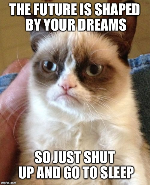 Dream on | THE FUTURE IS SHAPED BY YOUR DREAMS SO JUST SHUT UP AND GO TO SLEEP | image tagged in memes,grumpy cat,funny | made w/ Imgflip meme maker