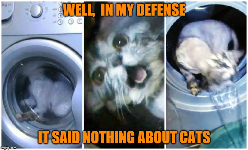WELL,  IN MY DEFENSE IT SAID NOTHING ABOUT CATS | made w/ Imgflip meme maker