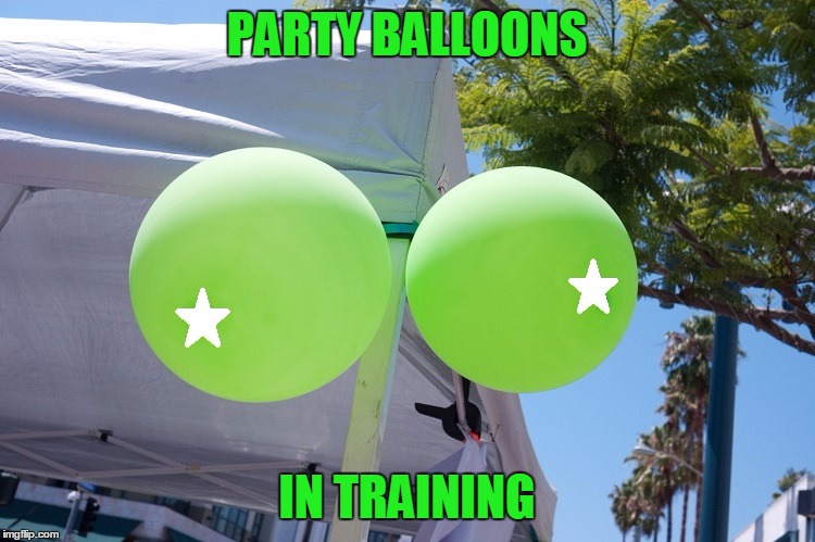 PARTY BALLOONS IN TRAINING | made w/ Imgflip meme maker