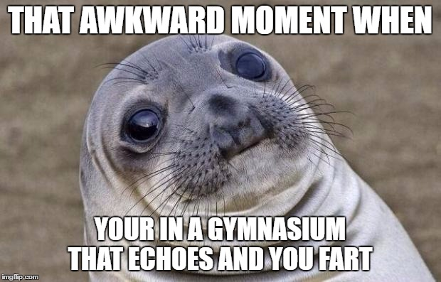 Awkward Moment Sealion Meme | THAT AWKWARD MOMENT WHEN YOUR IN A GYMNASIUM THAT ECHOES AND YOU FART | image tagged in memes,awkward moment sealion | made w/ Imgflip meme maker