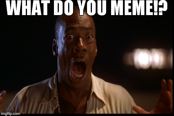 K.I.T. | WHAT DO YOU MEME!? | image tagged in kit | made w/ Imgflip meme maker