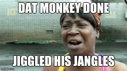 Aint Nobody Got Time For That Meme | DAT MONKEY DONE JIGGLED HIS JANGLES | image tagged in memes,aint nobody got time for that | made w/ Imgflip meme maker