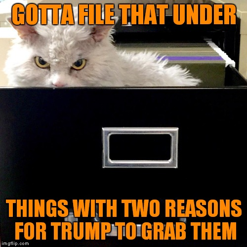 GOTTA FILE THAT UNDER THINGS WITH TWO REASONS FOR TRUMP TO GRAB THEM | image tagged in pompous lets file that under | made w/ Imgflip meme maker
