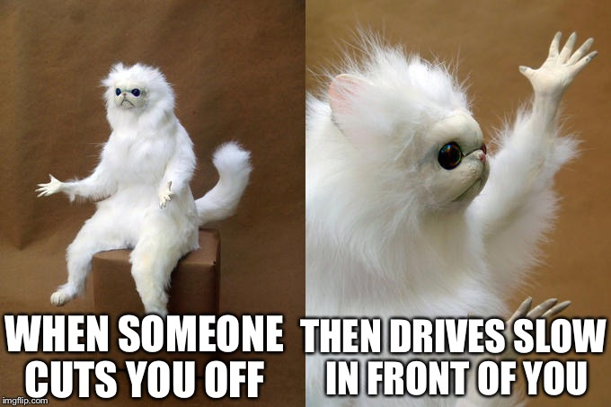 Just me? or no? | WHEN SOMEONE CUTS YOU OFF THEN DRIVES SLOW IN FRONT OF YOU | image tagged in funny,memes | made w/ Imgflip meme maker