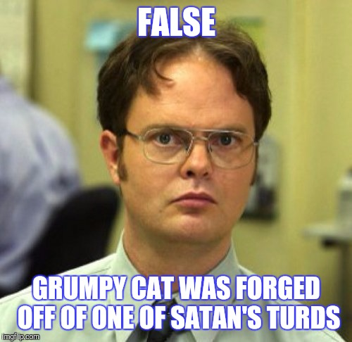 FALSE GRUMPY CAT WAS FORGED OFF OF ONE OF SATAN'S TURDS | made w/ Imgflip meme maker