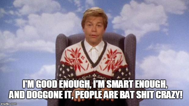 Stuart Smalley | I'M GOOD ENOUGH, I'M SMART ENOUGH, AND DOGGONE IT, PEOPLE ARE BAT SHIT CRAZY! | image tagged in stuart smalley | made w/ Imgflip meme maker