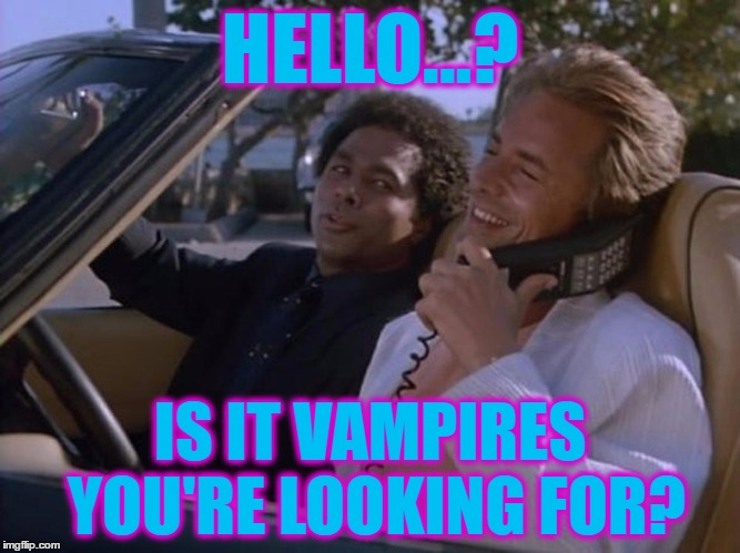 HELLO...? IS IT VAMPIRES YOU'RE LOOKING FOR? | made w/ Imgflip meme maker