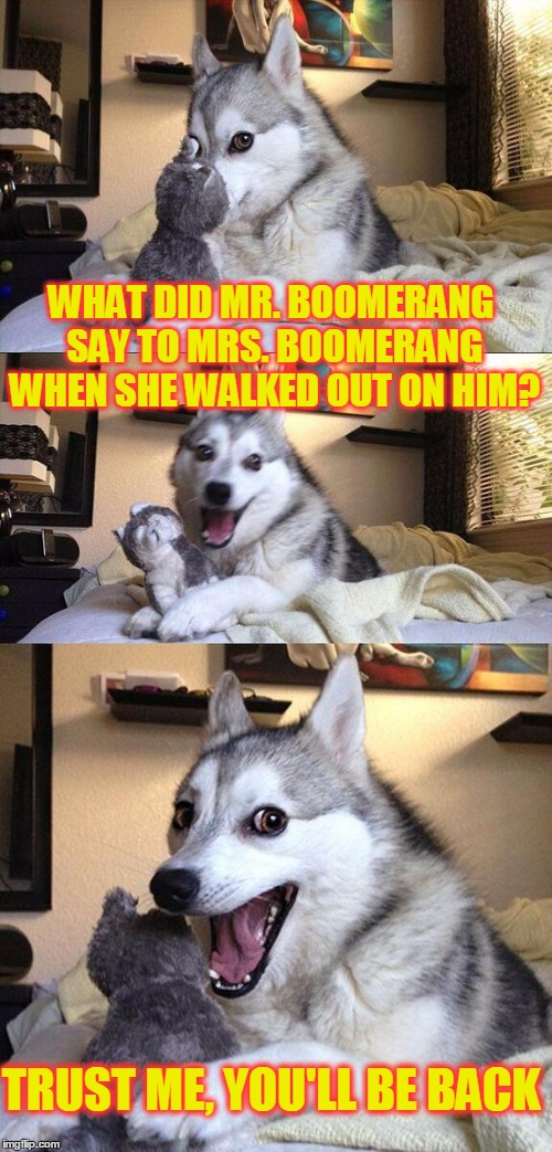Bad Pun Dog Meme | WHAT DID MR. BOOMERANG SAY TO MRS. BOOMERANG WHEN SHE WALKED OUT ON HIM? TRUST ME, YOU'LL BE BACK | image tagged in memes,bad pun dog,funny,joke,pun,marriage | made w/ Imgflip meme maker