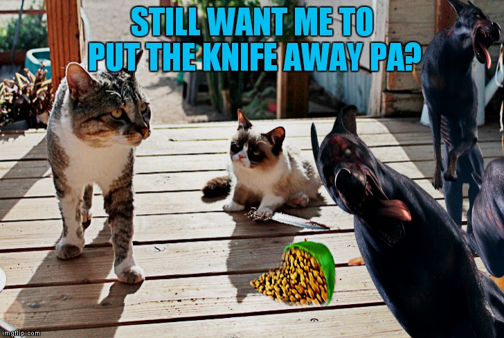 STILL WANT ME TO PUT THE KNIFE AWAY PA? | made w/ Imgflip meme maker