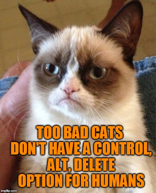 Grumpy Cat Meme | TOO BAD CATS DON'T HAVE A CONTROL, ALT, DELETE OPTION FOR HUMANS | image tagged in memes,grumpy cat | made w/ Imgflip meme maker