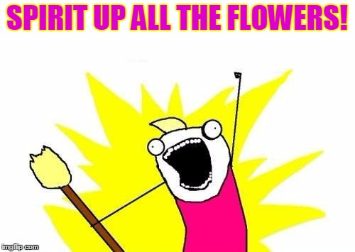 X All The Y Meme | SPIRIT UP ALL THE FLOWERS! | image tagged in memes,x all the y | made w/ Imgflip meme maker