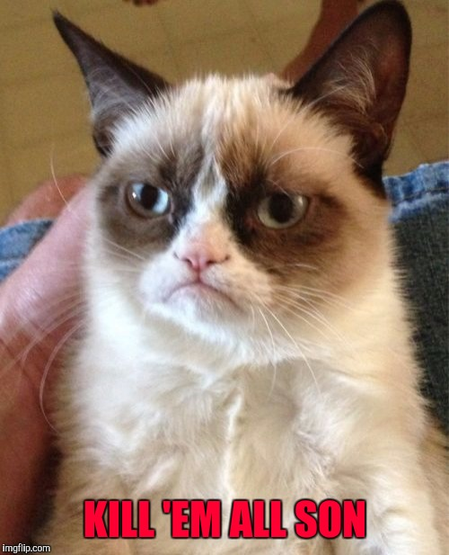 Grumpy Cat Meme | KILL 'EM ALL SON | image tagged in memes,grumpy cat | made w/ Imgflip meme maker