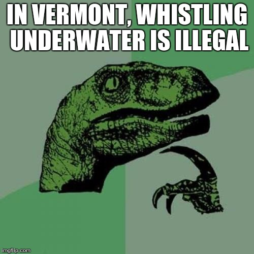 Weird Laws #2 | IN VERMONT, WHISTLING UNDERWATER IS ILLEGAL | image tagged in memes,philosoraptor,weird laws | made w/ Imgflip meme maker