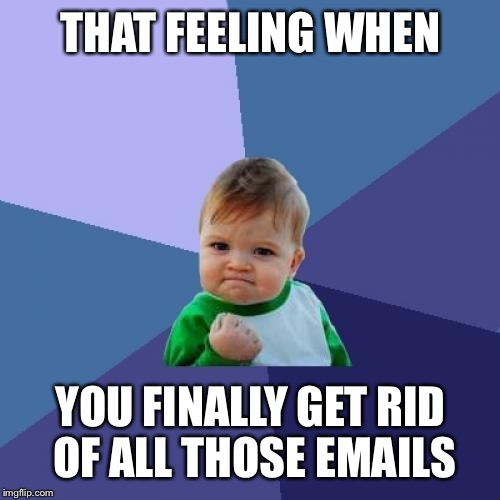 Success Kid Meme | THAT FEELING WHEN YOU FINALLY GET RID OF ALL THOSE EMAILS | image tagged in memes,success kid | made w/ Imgflip meme maker