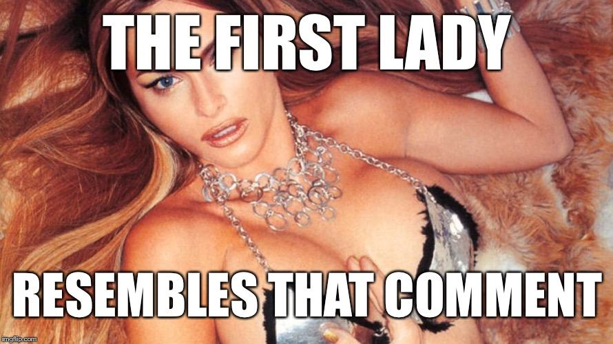 First Lady Russian Spy | THE FIRST LADY RESEMBLES THAT COMMENT | image tagged in first lady russian spy | made w/ Imgflip meme maker