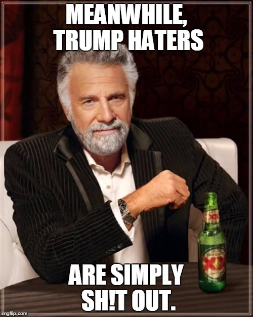 The Most Interesting Man In The World Meme | MEANWHILE, TRUMP HATERS ARE SIMPLY SH!T OUT. | image tagged in memes,the most interesting man in the world | made w/ Imgflip meme maker