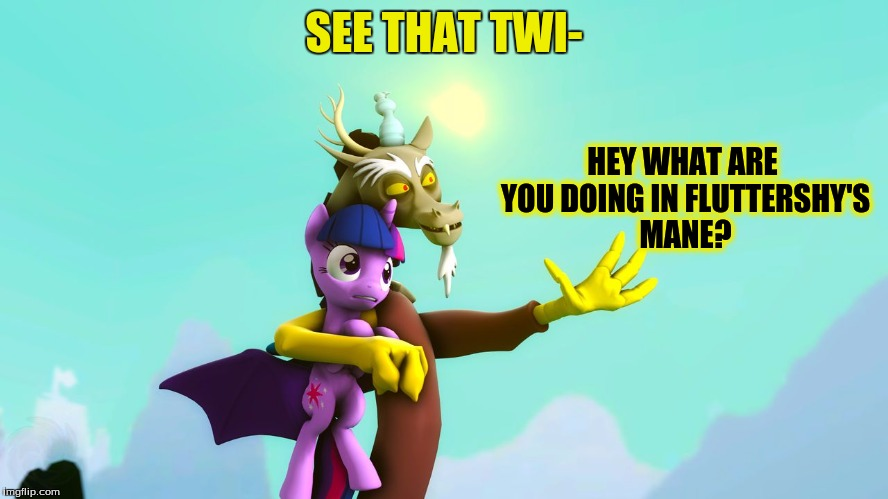 SEE THAT TWI- HEY WHAT ARE YOU DOING IN FLUTTERSHY'S MANE? | made w/ Imgflip meme maker