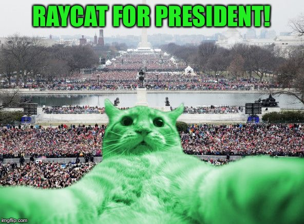 RAYCAT FOR PRESIDENT! | image tagged in raycat inauguration,memes | made w/ Imgflip meme maker