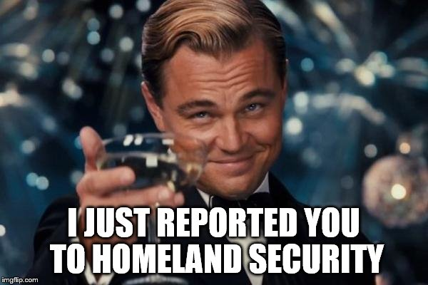 Leonardo Dicaprio Cheers Meme | I JUST REPORTED YOU TO HOMELAND SECURITY | image tagged in memes,leonardo dicaprio cheers | made w/ Imgflip meme maker