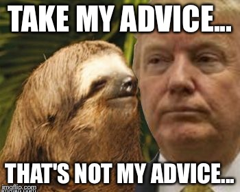 Political advice sloth | TAKE MY ADVICE... THAT'S NOT MY ADVICE... | image tagged in political advice sloth | made w/ Imgflip meme maker
