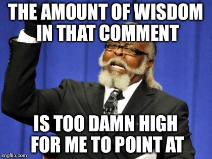 Too Damn High Meme | THE AMOUNT OF WISDOM IN THAT COMMENT IS TOO DAMN HIGH FOR ME TO POINT AT | image tagged in memes,too damn high | made w/ Imgflip meme maker