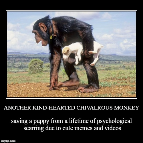 huzzah! huzzah! | ANOTHER KIND-HEARTED CHIVALROUS MONKEY | saving a puppy from a lifetime of psychological scarring due to cute memes and videos | image tagged in funny,demotivationals,cute puppies,puppies,monkeys | made w/ Imgflip demotivational maker
