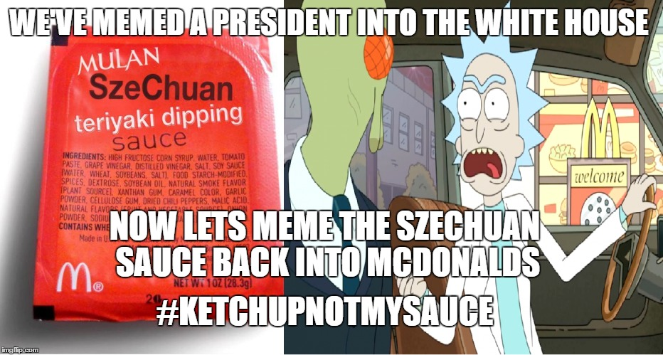 We need the sauce! | WE'VE MEMED A PRESIDENT INTO THE WHITE HOUSE NOW LETS MEME THE SZECHUAN SAUCE BACK INTO MCDONALDS #KETCHUPNOTMYSAUCE | image tagged in szechuan sauce,rick and morty | made w/ Imgflip meme maker