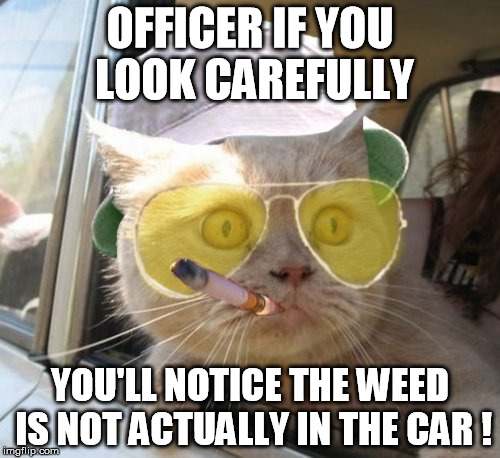 Fear And Loathing Cat | OFFICER IF YOU LOOK CAREFULLY YOU'LL NOTICE THE WEED IS NOT ACTUALLY IN THE CAR ! | image tagged in memes,fear and loathing cat | made w/ Imgflip meme maker
