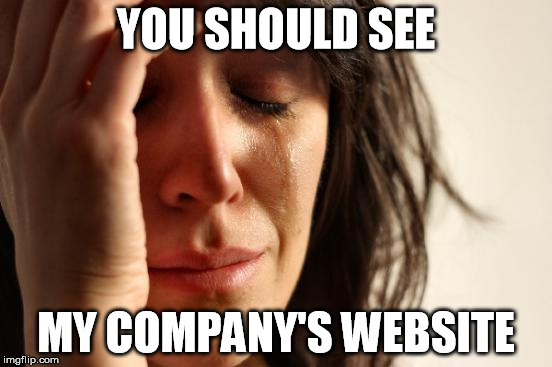 First World Problems Meme | YOU SHOULD SEE MY COMPANY'S WEBSITE | image tagged in memes,first world problems | made w/ Imgflip meme maker