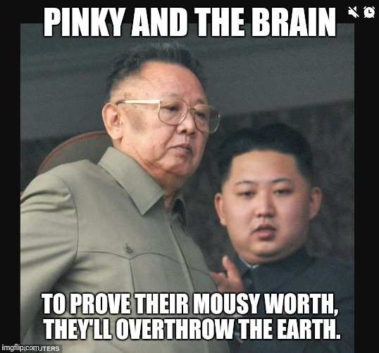 Pinky and The Brain | PINKY AND THE BRAIN TO PROVE THEIR MOUSY WORTH, THEY'LL OVERTHROW THE EARTH. | image tagged in sociopath | made w/ Imgflip meme maker