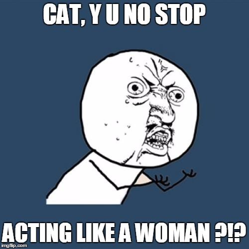 Y U No Meme | CAT, Y U NO STOP ACTING LIKE A WOMAN ?!? | image tagged in memes,y u no | made w/ Imgflip meme maker